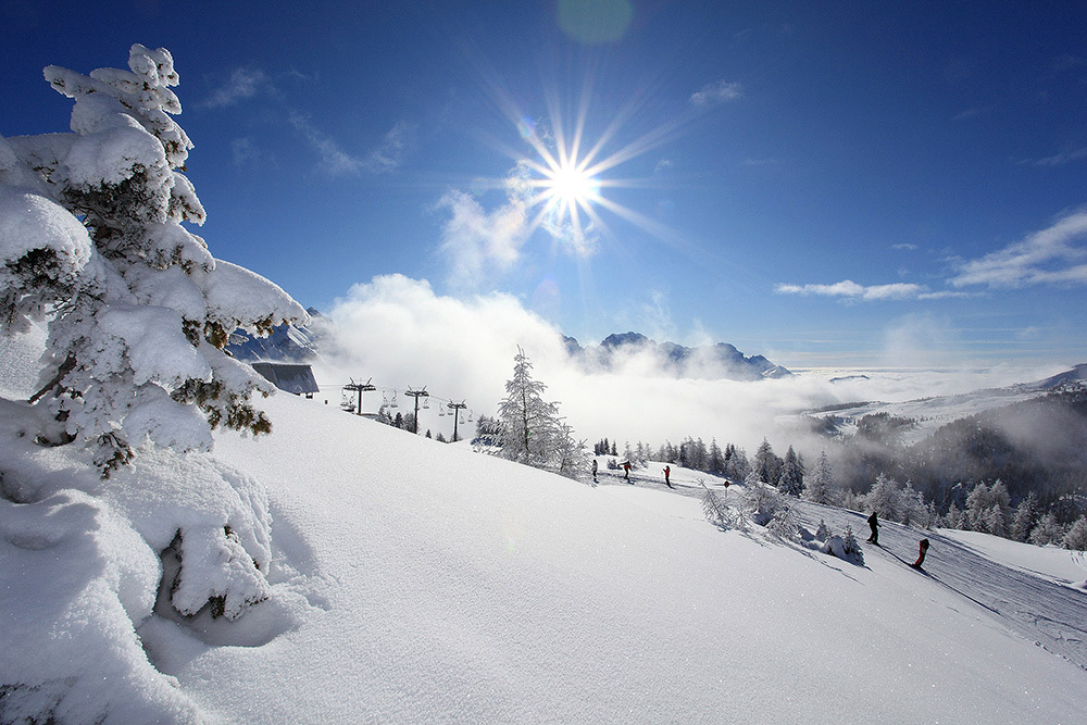Val di Sole skipass included: Hotel Garden 3*+ HB 9